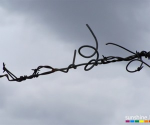 gay_barbed_wire